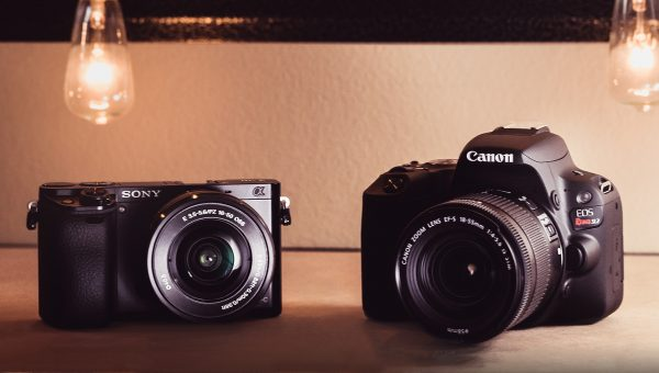 Best Camera for Beginners - Sony vs Canon (2018 Edition)