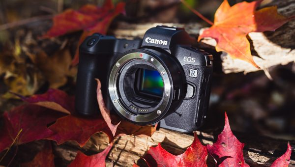Canon EOS R - Things Nobody Is Taking About