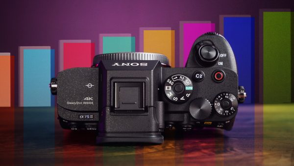 Sony a7S III Guide for Picture Profiles & Exposure